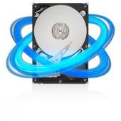 Hard-disk SEAGATE  1 TB, SATA3, 7200rpm, 32MB (ST31000524AS)
